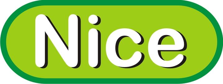 nice logo image information